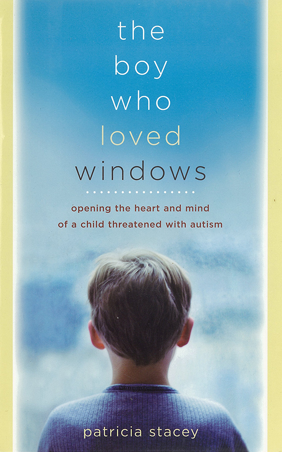 Book cover of the boy who loved windows
